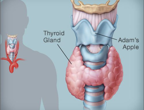 Improving thyroid function with LLLT