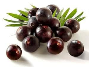 Acai Berry Facts and Information