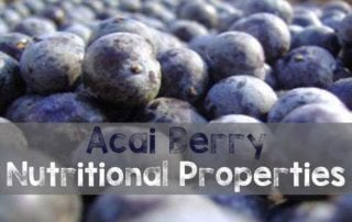 Acai Berry Nutritional Properties