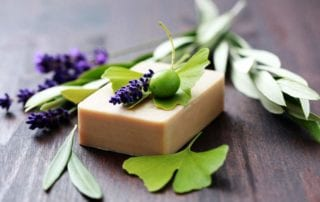 Plant Remedies Health and Beauty Woes Skindulgence